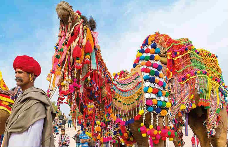 guida fiera del cammello di Pushkar