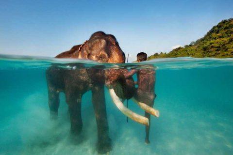 le migliori isole fluviali in india